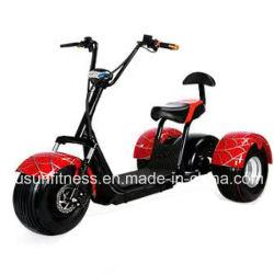 Usine directement la famille utilisée 60V 1500W Tricycle électrique adulte grande taille pour le shopping