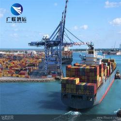 التوصيل السريع وكيل الشحن البحري البحري في المحيط مع سعر تنافسي من شركات النقل والإمداد في شينزين