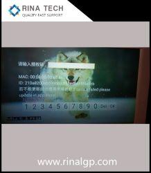 Multilingual Grosso Malásia Smart Video Player IPTV Android TV sem a necessidade de decodificador