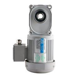 Двигатель ZD ZDF3 100W 60Гц 3-фазных двигателей гипоидной шестерни