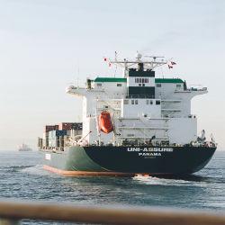 Ocan Fly Logistics LCL/20gp/40gp/40hq Scheepscontainer St. Petersburg Zeevracht Logistics