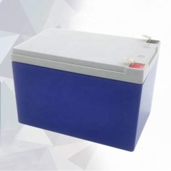 Yt9l-BS 차량용 배터리 전기차 또는 12V 48V 60V 72V 박스 산 전력 시간 리드 밴 지게차 기어 스쿠터 주기