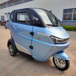 2020 Tricycle électrique Auto véhicule avec la CEE L2e homologation pour la vente en Europe à chaud