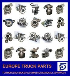 유럽, 한국, 일본 자동 브레이크/섀시/차체/변속기 부품 차량 미쓰비시/벤츠/도요타/현대/이수/대프/만/볼보/이비코/SCA용 예비 트럭 부품