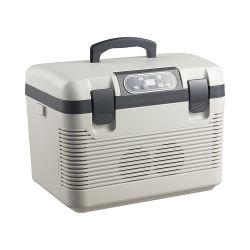 Mini refrigerador termoeléctrico y cálido para la venta