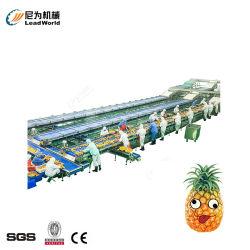 Produzione alimentare inscatolata automatica Machinefor Lobser e pettine