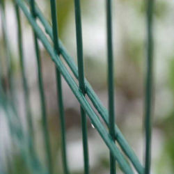 Enduit de PVC Wire Mesh clôture 868 Double/Twin Wire Mesh Fence