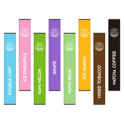 300 puffs Vapor Stick OEM علامة تجارية بالجملة Ecig E-Cigarette يمكن التخلص منها بعد الاستخدام