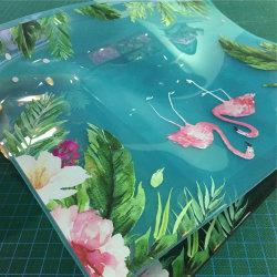 Impression de feuille en PVC transparent aux UV tout dessin ou modèle de feuille d'impression peuvent être imprimés couleurs Multy