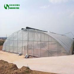 수경법 증가를 위한 소형 작은 농업 단 하나 경간 갱도 또는 굴렁쇠 플레스틱 필름 온실