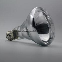 Reptil-Lampe der Reptil-aalende Punkt-Birnen-R95 150W