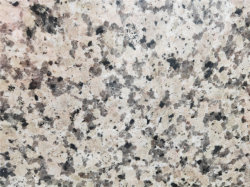 Haute qualité Rosa Porrino comptoir en granit/ Vanity Tops