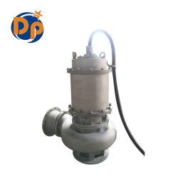 China-Fertigung-elektrische versenkbare Abwasser Gleichstrom-Wasser-Pumpe