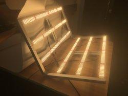 مصابيح التدفق Spydrx Lm301b LED لزيادة الإضاءة شريط الإضاءة بقدرة 600 واط Lm301h 600 واط في مصنع طبي