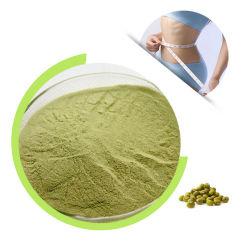 Mungobohne-Protein-Puder-Ausgleich der verschiedenen Aminosäuren notwendig für menschliches Wachstum
