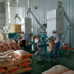 Todo o Conjunto de Milho de venda de máquinas da fábrica do moinho de farinha de trigo