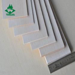 Wada tamanho diferente do modelo de plano de ar por grosso balsa de madeira/Folhas