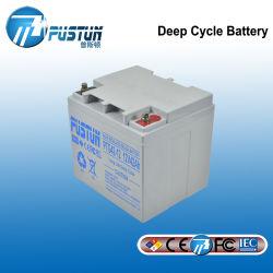 Batterij met lange levensuur van de Straatlantaarn van de Kwaliteit van de Batterij 12V 24V 42ah de Zonne