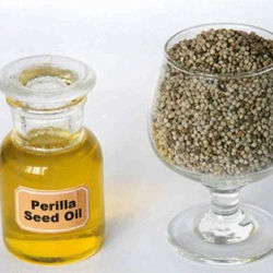 Станции извлечения масла семян Perilla 70%