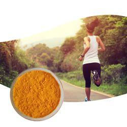 La Ubiquinona Coq10 Suplemento en polvo aceite Soloble 303-98-0 del 98% de polvo de la Coenzima Q10