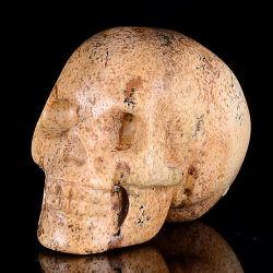 Imagem de Escultura Esqueleto Jasper, Crânio Carving (0A12)