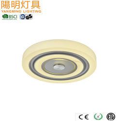 SAE популярных светодиодный потолочный светильник для дома декор отеля/
