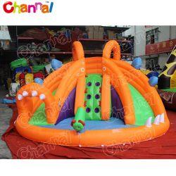 Mini Diapositiva inflable de nylon doble tobogán de agua para los niños Qw110