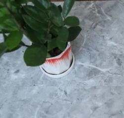 Vloer van SPC van de Diamant van de Kern van de Korrel van 100% de Waterdichte Houten Stijve Vinyl