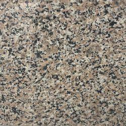 Granito grigio di vendita popolare che pavimenta le mattonelle & decorazione & controsoffitto della parete