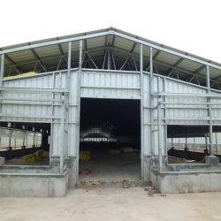 Estrutura de aço de baixo custo de construção Fazenda Galpão de aves de capoeira/Turquia House