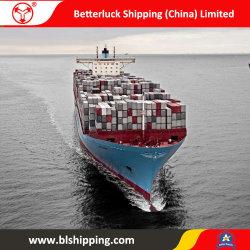 De Vracht van de verschepende Container van China aan Nieuw Zeeland Logistische Tauranga