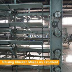 Цена современных коммерческих металлические четырех уровней H-типа Несушек птицы отсек для слоя яйцо куриное мясо