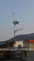 24V Batteries를 위한 Solar Panel off-Grid System Charge를 가진 300W Horizontal Wind Turbine