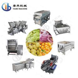 Промышленные SUS304 овощей и фруктов/лимона/Apple/оранжевый/картофеля и моркови стиральной/очистка машины на заводе обработки продуктов питания линии