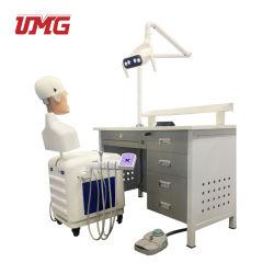 Vendre à chaud de haute qualité des modèles de formation sur simulateur dentaire