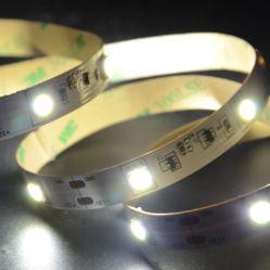 CE/UL/RoHS aprobó una corriente constante TIRA DE LEDS con precio competitivo
