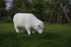 L'artisanat moutons en fibre de verre statues résine Sculpture de la taille de la vie Animial PRF