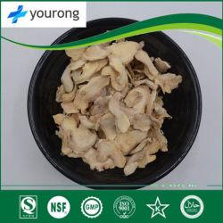 Ingwer, eine chinesische Medizin mit großem medizinischem Wert, Pflanzenauszug