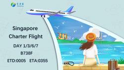 DDU DDP DAP الشحن الجوي من الصين إلى سنغافورة