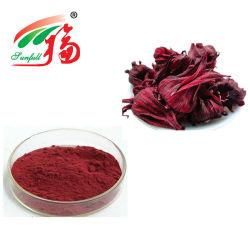 Fleur d'Hibiscus extrait 10 % Anthocyanidins