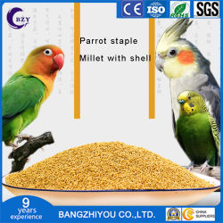 Sparrow alimentos para pássaros painço amarelo painço alimentos para pássaros painço alimentos para pássaros da pele de tigre pequenas Sun Parrot APC