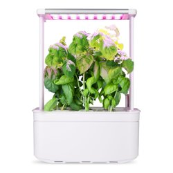 Jardim Interior inteligente em hidroponia Ervas Planta da Plantadeira Vegetais Flower Pot Aparelho de cozinha