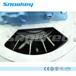 世界第1製氷機械薄片の製氷機の氷装置