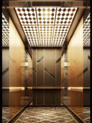 VvvF China Top Brand 1234567 Floor Villa Passeing Elevators