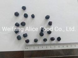 Conservas de fruta seca de secado de aire Blueberry