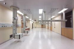 Preço barato quarto Médica Maca de folha de proteção