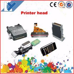 رأس الطباعة من كل أنواع Roland/Mimaki/Mutoh/Challenger/Galaxy/Wit-Color/Locor Inkjet Printer Best Price
