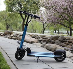 Ce approuvé avec batterie au lithium de skateboard électrique