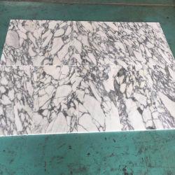 Mosaico de mármol Arabescato Corchia Italia y la losa de mármol blanco