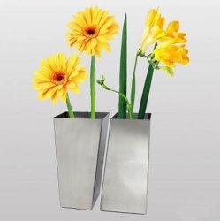 De Vaas van de bloem, de Vaas van de Bloem van het Metaal, de Vaas van de Bloem van het Roestvrij staal